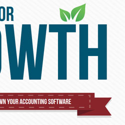 Prophet Accounting for Growth eBook