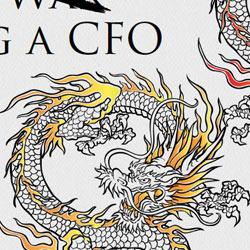 Arrow Art of Persuading CFO eBook