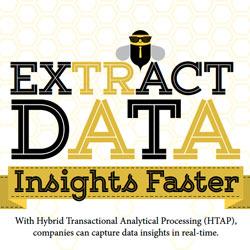 Clustrix Extract Data Infographic
