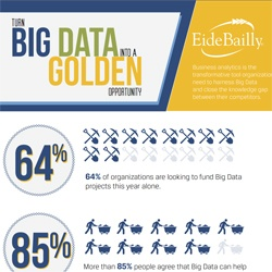 EideBailly Big Data Infographic