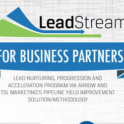 Leadstream Business Partners Infographic